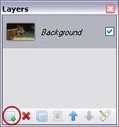Layers Toolbar in Paint.NET