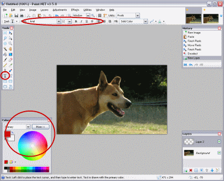 Location of Text and Color Tools in Paint.NET