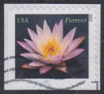 United States Water Lily stamp used more than a week before first day of issue