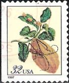 32-cent U.S> postage stamp picturing citron