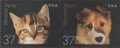 Pair of 37-cent U.S. postage stamps picturing kitten and puppy