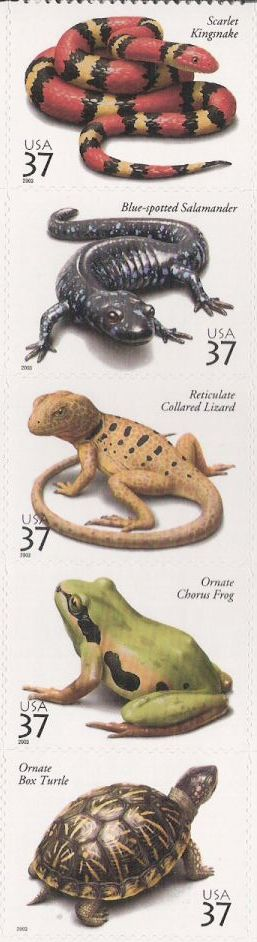 Strip of five 37-cent U.S. postage stamps picturing reptiles and amphibians