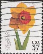 37-cent U.S. postage stamp picturing daffodil