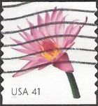 41-cent U.S. postage stamp picturing water lily