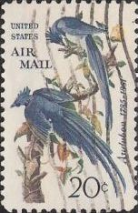 20-cent U.S. postage stamp picturing blue jays